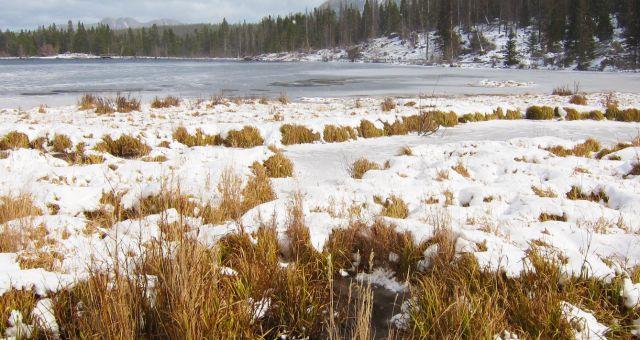 Sprague Lake Rocky Mountain NP