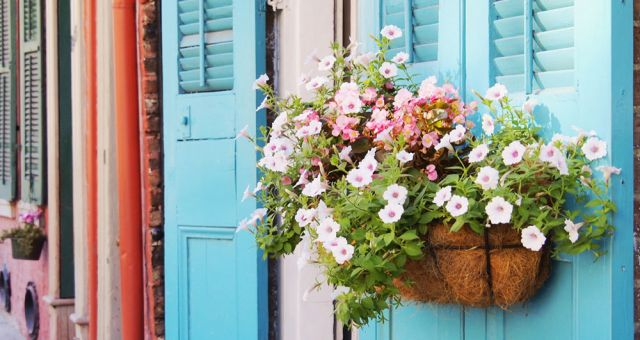 Colorful doors in the French Quarter