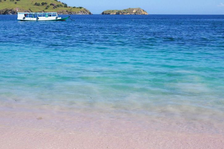 pink beach in Flores