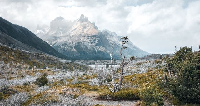 W Trek Patagonia